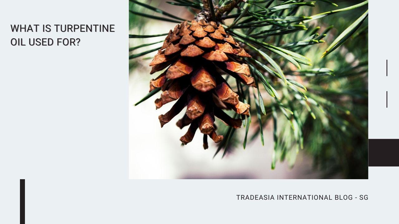 turpentine oil uses blog banner